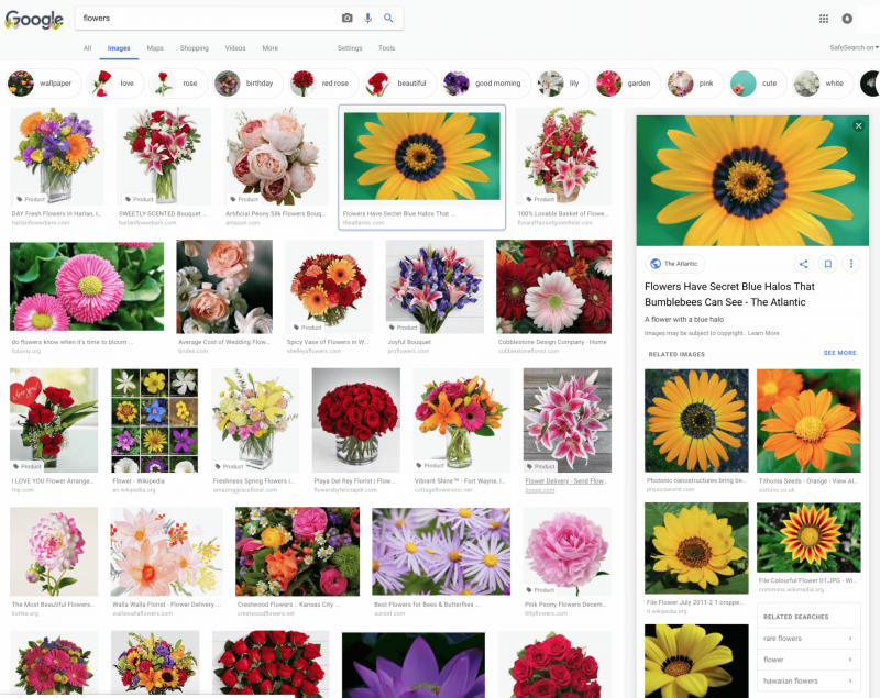 Is Google Image Search Rolling Out A New Design for Image Preview?