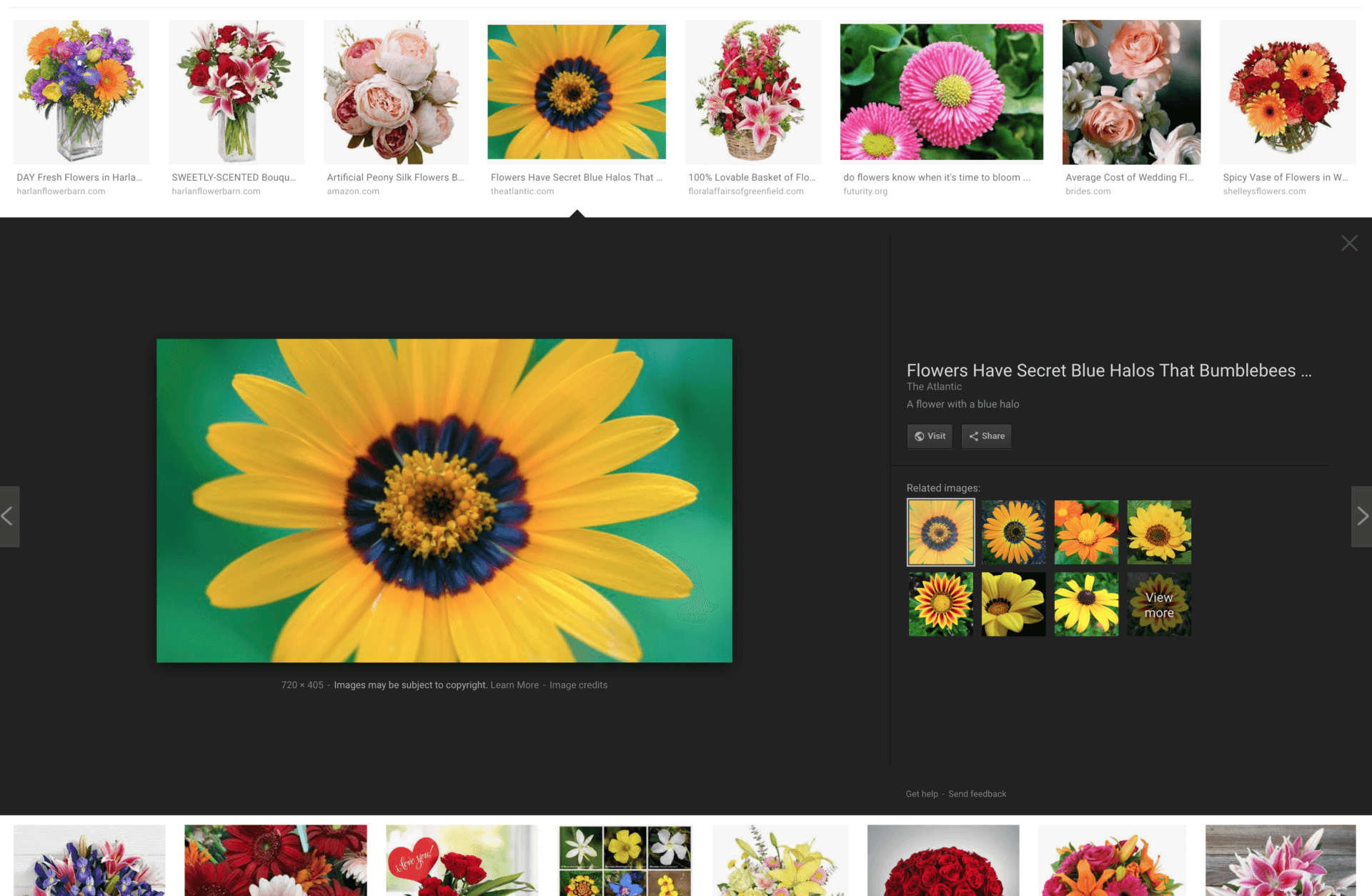 Google Image Search Rolling Out A New Design for Image Preview